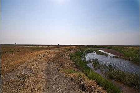 Image of Grizzly Island Wildlife Area